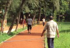 Jogging in Indian Park